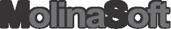 MolinaSoft Logo